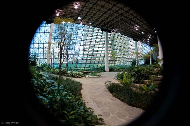 Sigma 15mm F/2.8 EX DG Fisheye Lens