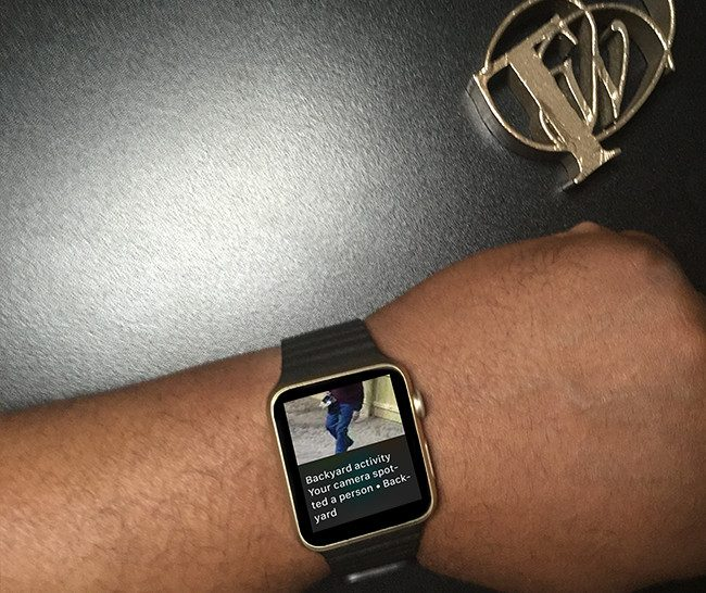 apple watch alert